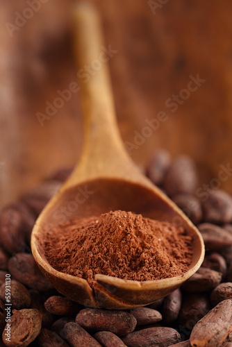 cocoa powder in spoon  on roasted cocoa chocolate beans backgrou