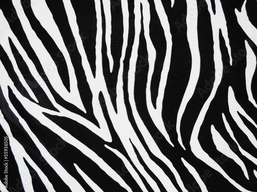 Texture of black and white zebra textile - 55936505