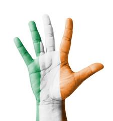 Open hand raised, multi purpose concept, Ireland flag painted