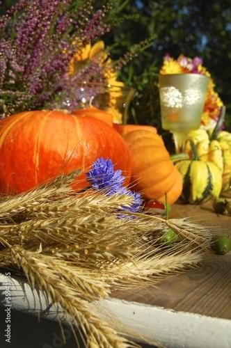 Dekoration mit Getreide