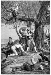 Olives Gathering - Cueillette des Olives - 19th century
