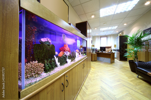 Light office with desktop, armchair and big aquarium