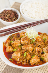Mapo Tofu - Szechuan tofu and minced pork dish with rice.