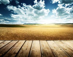 wood platform and barley  hills Tuscany, Italy