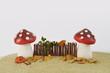 Zwei Pilze im Herbst Dekoration