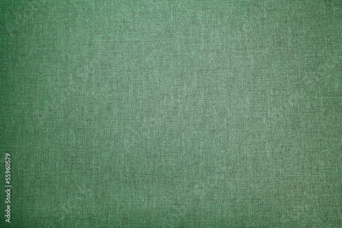 Abstract  green background (canvas)