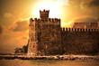 canvas print picture - The Castle