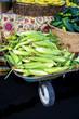 Wheel Barrel filled with fresh sweet corn