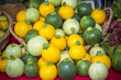 Many different kind sof small round squash