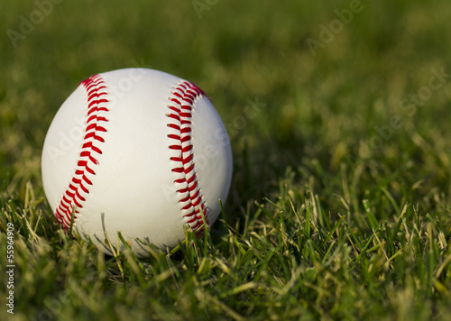 Baseball on the field with green grass