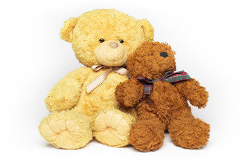 Two teddy-bear friends