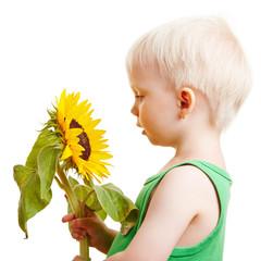 Kind schaut eine Sonnenblume an