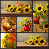 Collage of autumn  photos with sunflowers and pumpkin