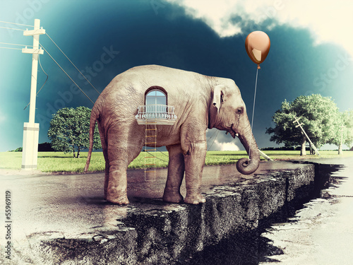 elephant -house on the road