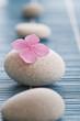 Zen stones and pink flowers