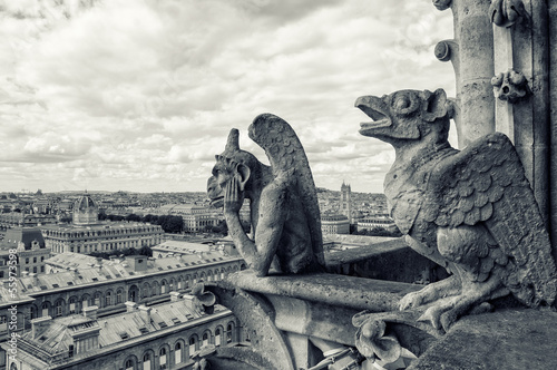 view from the Cathedral of Notre Dame in Paris