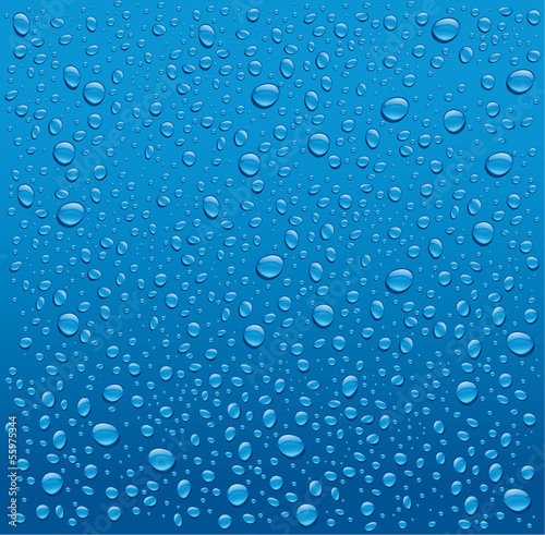 water drops on blue background - 55975344