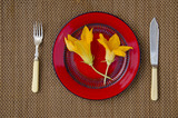two summer pumpkin zucchini flowers in red plate on table