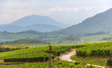 Famous wine route in Alsace, France