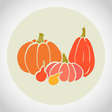 Colorful hand drawn thanksgiving pumpkins in circle.