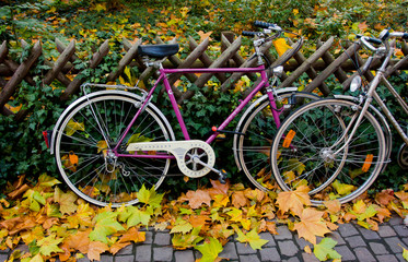 Bicycles and Autumn in the city