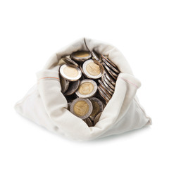 Money Bag on white background