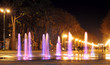 Colored water fountain at night. Ukraine. Kharkov. Gorky Park. - 55992183