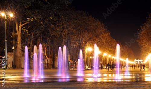 Colored water fountain at night. Ukraine. Kharkov. Gorky Park. - 55992183