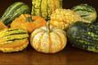 Fall Squash or Gourds Closeup