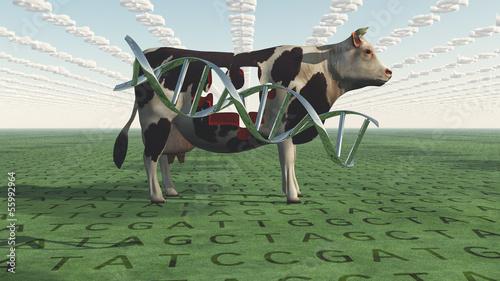 GMO Business