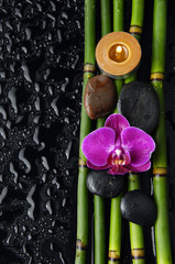 Spa still life with orchid and thin grove