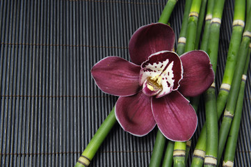 red orchid and thin bamboo grove on stick straw mat