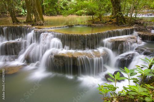 Fototapeten,thailand,rainforest,camping,draußen