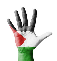Open hand raised, multi purpose concept, Palestine flag painted
