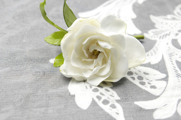 White Gardenia and lace texture
