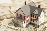 Single family house on pile of money - 55999982