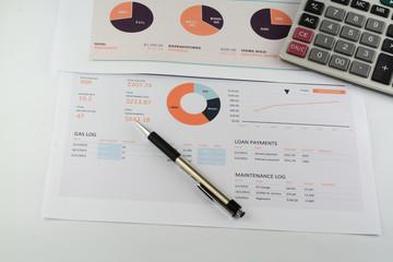 car budget report