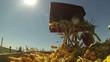 Harvesting Corn Cob - Slow Motion