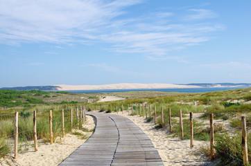 La dune du Pilat en Gironde. Protection du littoral