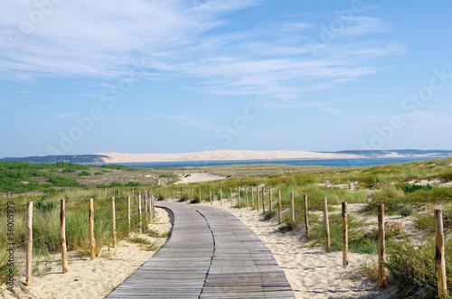 Papiers peints Cote La dune du Pilat en Gironde. Protection du littoral