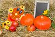 Herbstdekoration mit unbeschriebener Tafel