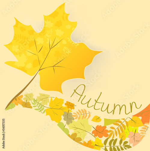 abstract background with autumn maple leaf