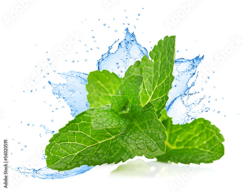 Leinwandbild Motiv Mint leafs water splash