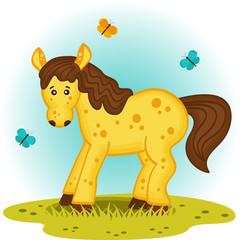 little foal in the meadow - vector illustration