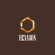 illustration with diamond hexagon icon