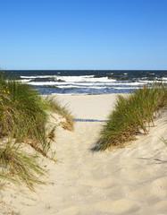 fototapeta droga do plaży