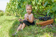 Little girl in vineyard