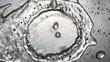 Chorro de Agua Corriente del Grifo en el fregadero ( 3 Cortes )