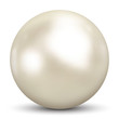 Perle, Kugel, Dekoration, Juwel, Auster, Muschel, Schmuck, 3D - 56029147