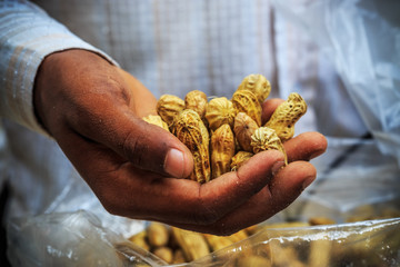 Peanuts in an Indian man's hand